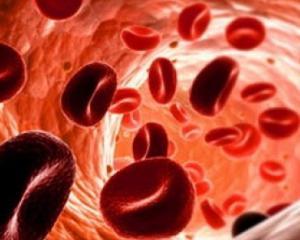 Симптомы низкого гемоглобина у женщин