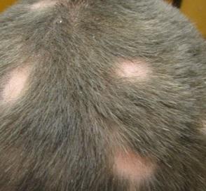 Средство и витамины для роста волос