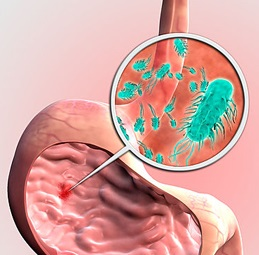 хеликобактер пилори может ли вызвать аллергию
