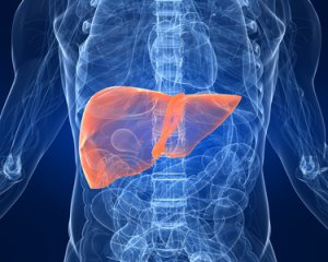 Гепатит С - симптомы, лечение и профилактика