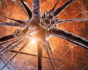 Менингит: симптомы у взрослых и детей, лечение