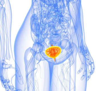 Воспаление мочевого пузыря у женщин: симптомы, лечение, причины