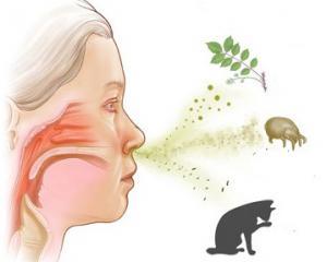 Аллергический ринит - симптомы и лечение у взрослых