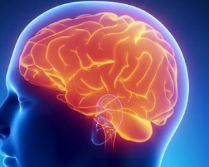 Киста головного мозга - симптомы и лечение