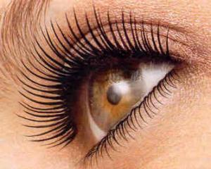 Блефарит - симптомы и лечение, фото