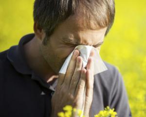 Поллиноз - симптомы, лечение и профилактика