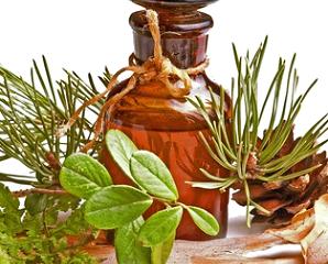 Пихтовое масло - применение в домашних условиях